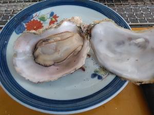 マルモ水産の牡蠣が焼けました