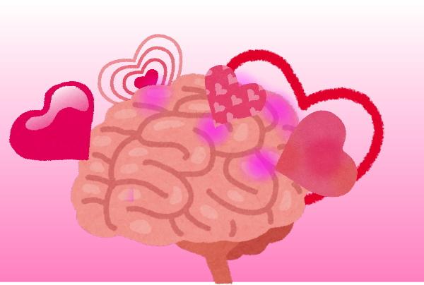脳が感じるの