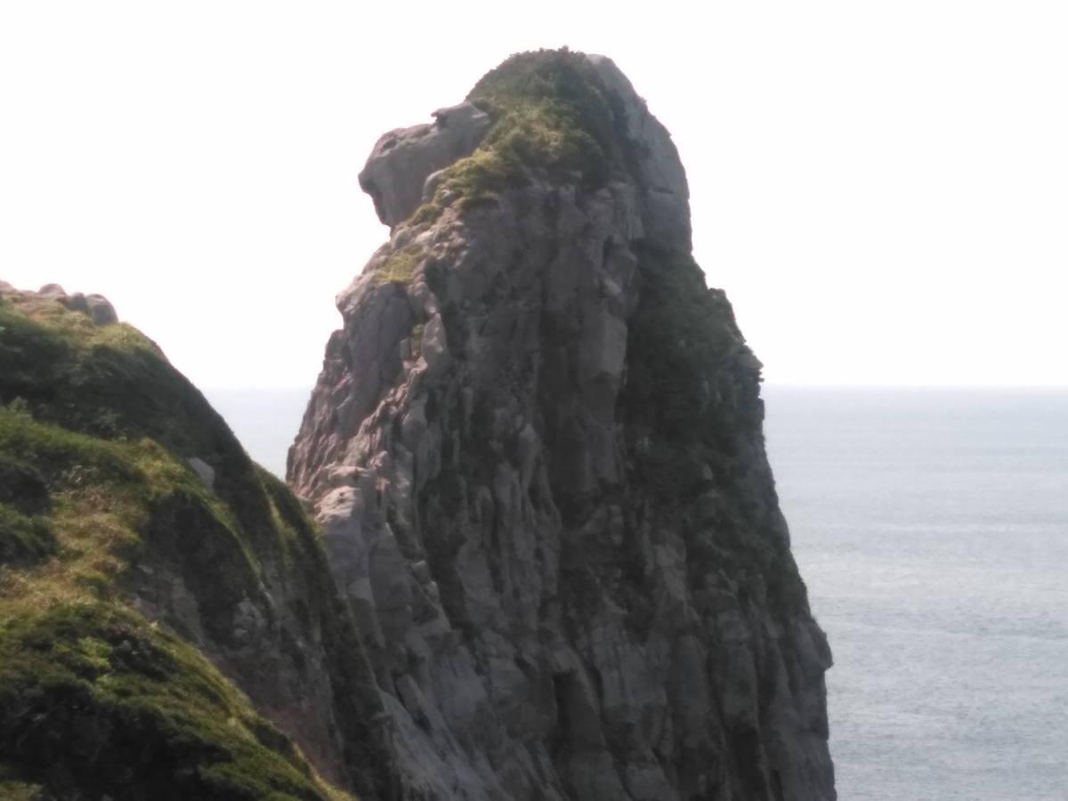 壱岐の景勝地猿岩