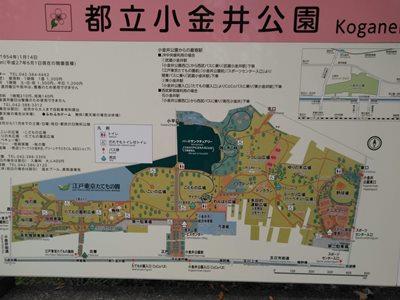 東京都立小金井公園案内図