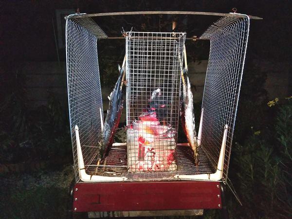 秋刀魚炭火焼きシステム
